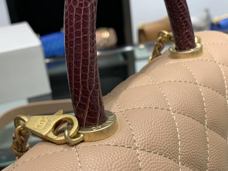 Chanel(香奈儿) coco handle 小号 链条包 杏仁色 金扣 蜥蜴手柄 24cm